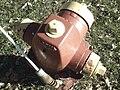 Fire hydrant 7.jpg