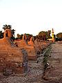 Flickr - archer10 (Dennis) - Egypt-3B-065.jpg