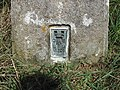 Flush Bracket, Baulker Ln Trig Point - geograph.org.uk - 42046.jpg
