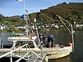 Foot and bike ferry over the Moselle river, Burgen, Germany - panoramio (3).jpg
