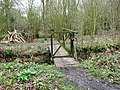 Footbridge over a ditch west of Mill Road - geograph.org.uk - 1780428.jpg