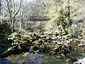 Footbridge over the River East Allen - geograph.org.uk - 390990.jpg