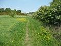 Footpath in Howley Park, Morley - geograph.org.uk - 2141854.jpg
