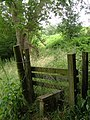 Footpath into Worms Wood - geograph.org.uk - 204676.jpg