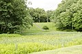 Forest Park, Springfield, MA 01108, USA - panoramio (79).jpg