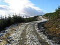 Forest road, Boreland - geograph.org.uk - 281324.jpg