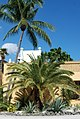 Fort Lauderdale Beach, FL - Bonnet House 04.jpg