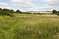 Fort Nelson nature area, Portsmouth - geograph.org.uk - 510456.jpg