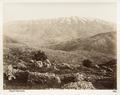 Fotografi på berget Hermon - Hallwylska museet - 104254.tif