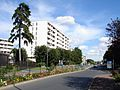 Franconville - Rue de Paris 01.jpg