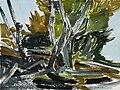 Frank Dekkers Loireoever 2003 aquarel 56x76 cm.jpg