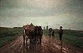 Frans van Leemputten - Aan de Schelde-arm.jpg