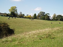 Frenchay Common - geograph.org.uk - 307949.jpg