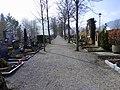 Friedhofallee - panoramio.jpg