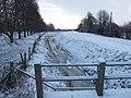 Frozen drain - geograph.org.uk - 1658155.jpg