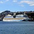 Funchal, Madeira - 2013-01-09 - 85880437.jpg