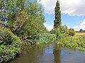 GOC Wheathampstead 049 River Lea (19628533491).jpg