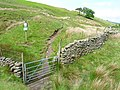Gate to Open Country - geograph.org.uk - 1326066.jpg