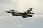General Dynamics F-16A MLU Fighting Falcon 4 (7567854398).jpg