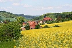 Gerbershausen Rapsfeld.jpg