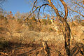 Gfp-missouri-castlewood-state-park-cliffs-at-castlewood.jpg