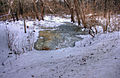Gfp-wisconsin-madison-icy-pond.jpg