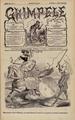 Ghimpele 1879-02-04, nr. 08.pdf