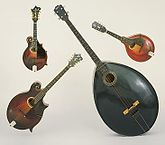 Bandolin de Orquestra Gibson:  1920 F-4, 1917 H-2, 1924 K-4 mando-cello, and 1929 mando-bass