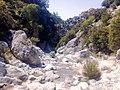 Gimello - creek - 14.jpg