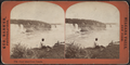 Goat Island from Canada, by Barker, George, 1844-1894.png