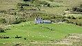 Gortdromagh, Ring of Kerry (506588) (27524043104).jpg