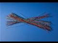 Grace Murray Hopper visualizing nanoseconds.png