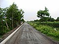 Grand Canal Towpath in Clondalkin, Dublin 22 - geograph.org.uk - 1371779.jpg
