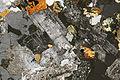 Granodiorite pmg ss 2006.jpg