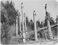 Grave posts. Khinkwan. Cape Fox Village, Alaska. - NARA - 298006.tif