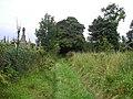 Graveyard Wall - geograph.org.uk - 980972.jpg