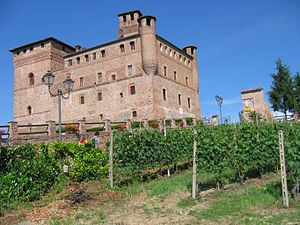 Vineyard Landscape of Piedmont: Langhe-Roero and Monferrato - Grinzane Cavour castle