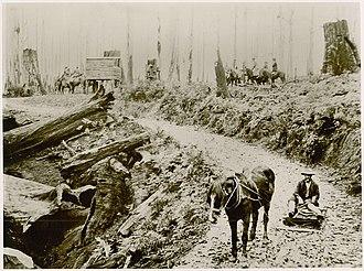 Strzelecki Ranges - Image: Gunyah 1913