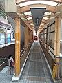 HK Central-Midlevels SOHO escalators view Robinson Road November 2020 SS2 05.jpg
