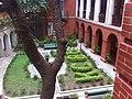HK Mid-levels 般咸道 Bonham Road 英皇書院 garden King's College fig tree March-2012 Ip4.jpg