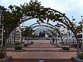 HK Pak Shek Kok Promenade evening 4-Nov-2012.JPG