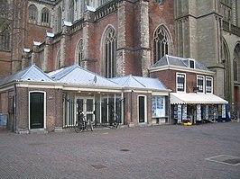 266px-Haarlem_vishal.jpg