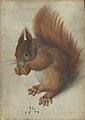 Hans Hoffmann - Squirrel - WGA11455.jpg