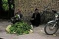 Happy Guys, Isfahan - panoramio.jpg