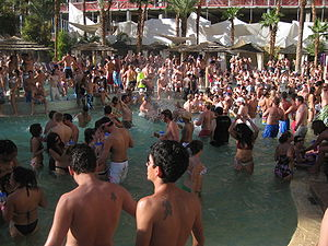 Rehab: Party at the Hard Rock Hotel - The Rehab party in October 2008