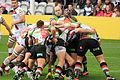 Harlequins vs Sharks (10509409595).jpg