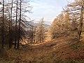 Hawkshead, UK - panoramio (1).jpg