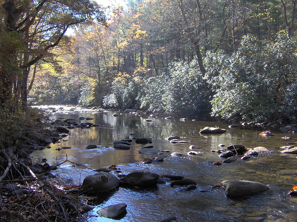 Hazel-creek-proctor-nc1