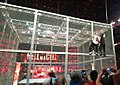 Hell in a Cell 04.jpg