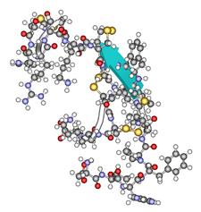 Štruktúra molekuly hepcidínu